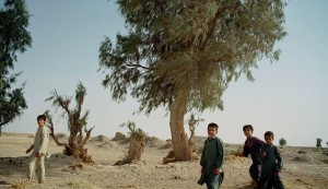 Young Iranian boys play under a tree beside a well outside Zabol in south eastern Iran, July 17, 2001. Iran's Sistan-Baluchistan province is suffering from a third consecutive year of drought which the United Nations says has cost the country $2.6 billion in dammages this year, up from $1.7 billion last year. Local officials say without rain remaining water sources will dry up by December.  CJF - RTRKVRC